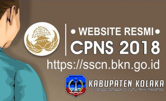 41website-resmi-pendaftaran-cpns-2018.jpg